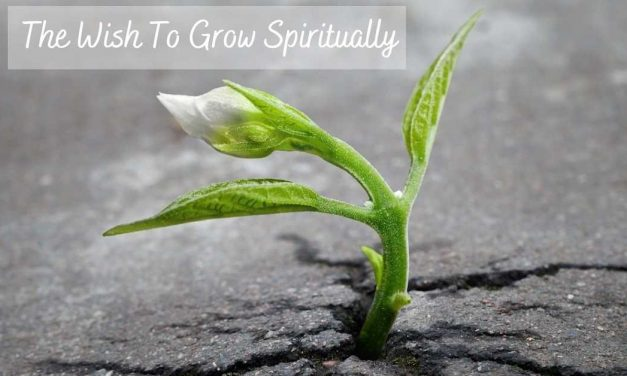 The Wish to Grow Spiritually – Embracing Your Innate Power of Desire