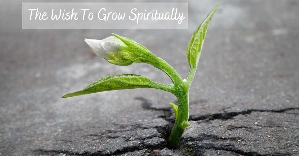 The Wish to Grow Spiritually – Embracing Your Innate Power of Desire