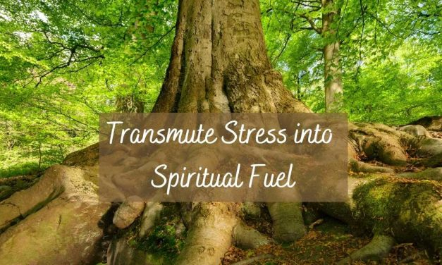 How to Transmute Stress into Fuel for Your Spiritual Growth
