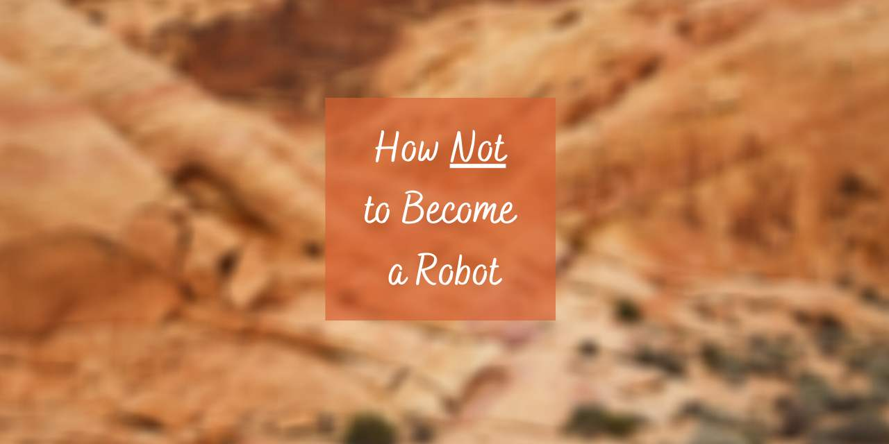 How Not to Become a Robot – The Importance of Spiritual Work